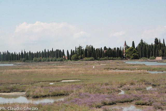Ph-GhezzoClaudio - Barene e Velme